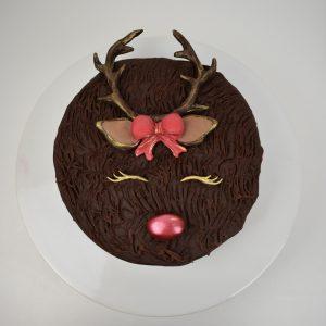 Reindeer Cake Kit