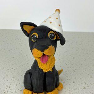 Kelpie Pup